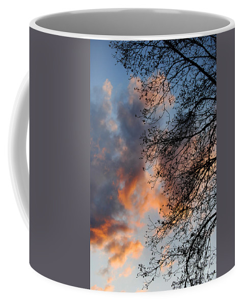 Scenic Tours Coffee Mug featuring the photograph Lace In The Sunset by Skip Willits