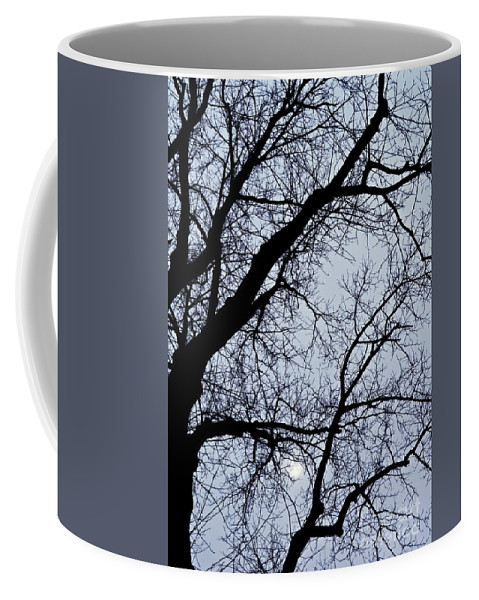Tree Coffee Mug featuring the photograph Lace by Sarah Loft