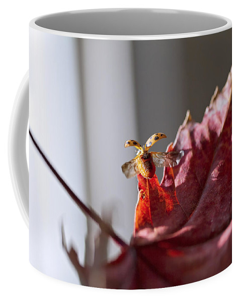 Sky Is The Limit Images Coffee Mug featuring the photograph Lady Bug Flight by Becca Buecher