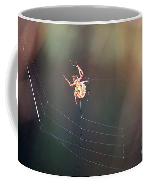 Spider Coffee Mug featuring the photograph Lady In The Marsh by Carol Groenen