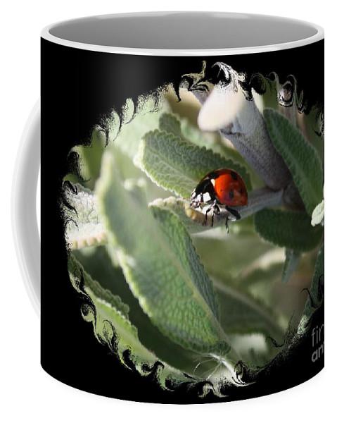 Ladybug On Sage Coffee Mug featuring the photograph Ladybug On Sage With Swirly Framing by Carol Groenen