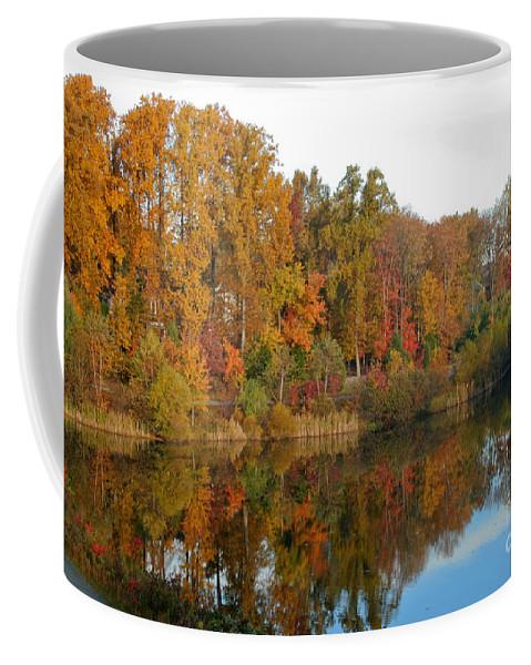 Fall Coffee Mug featuring the photograph Lake Helene And Fall Foliage by Thomas Marchessault