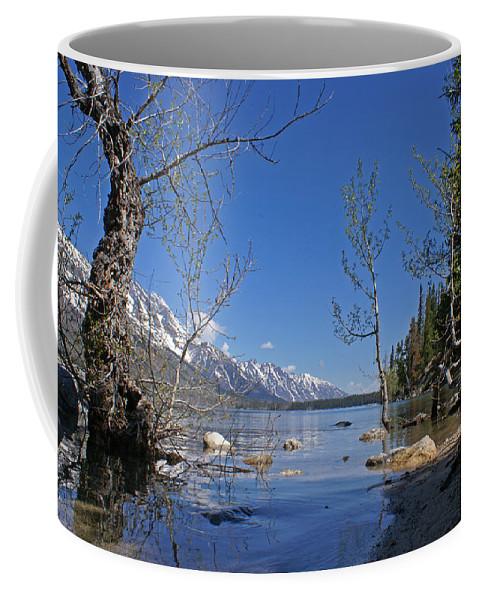 Lake Jenny Coffee Mug featuring the photograph Lake Jenny by Heather Coen