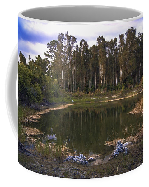 Lakeside Coffee Mug featuring the photograph Lakeside Reflections by Michael Frizzell
