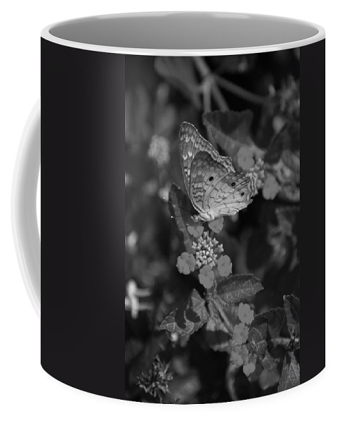 Black And White Coffee Mug featuring the photograph Landed by Rob Hans