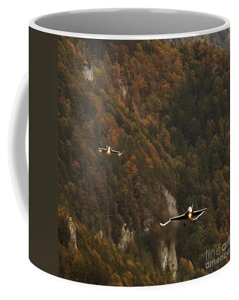 Axalp Coffee Mug featuring the photograph Landing by Angel Ciesniarska