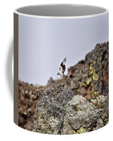 Idaho Coffee Mug featuring the photograph Landing by Wendy Turner