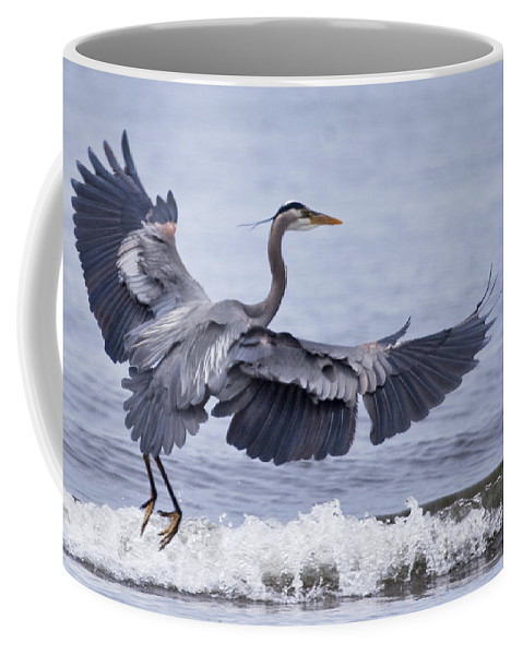 Bird Coffee Mug featuring the photograph Landing With The Wave by Karen Ulvestad