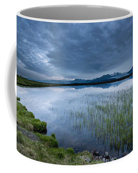 Photography Coffee Mug featuring the photograph Landscape With Water Grass by Panoramic Images