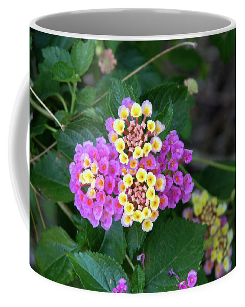 Floral Coffee Mug featuring the photograph Lantanna's Blooms by Thomas Whitehurst