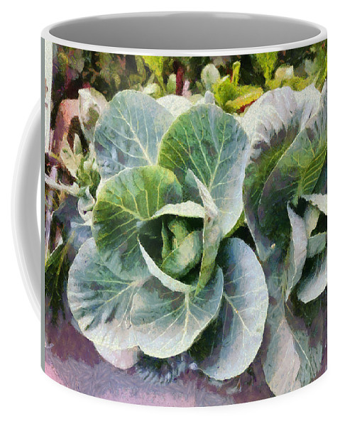 Cabbage Plant Coffee Mug featuring the photograph Large Leaves Of A Cabbage Plant by Ashish Agarwal