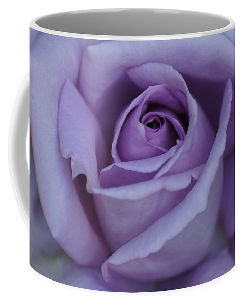 Center Coffee Mug featuring the photograph Large Purple Rose Center - 002 by Shirley Heyn