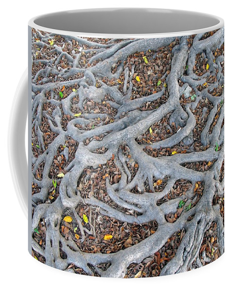 Root Coffee Mug featuring the photograph Large Root System by Yali Shi