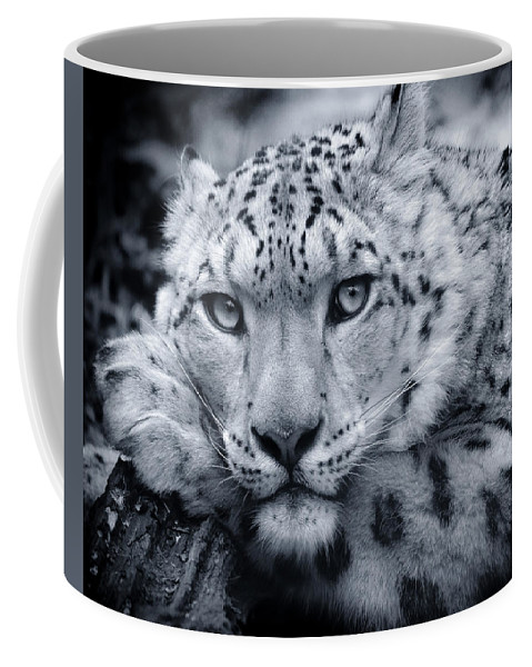 Snow Leopard Coffee Mug featuring the photograph Large Snow Leopard Portrait by Chris Boulton