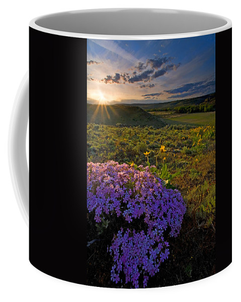 Wildflowers Coffee Mug featuring the photograph Last Light Of Spring by Mike Dawson