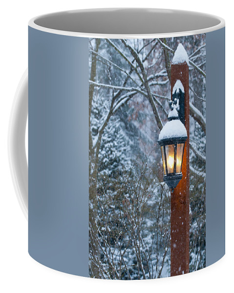 Winterscape Coffee Mug featuring the photograph Late Afternoon Snow by Sandra Bronstein