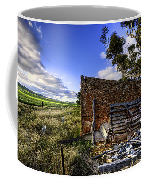 Farm Coffee Mug featuring the photograph Late Afternoon by Wayne Sherriff