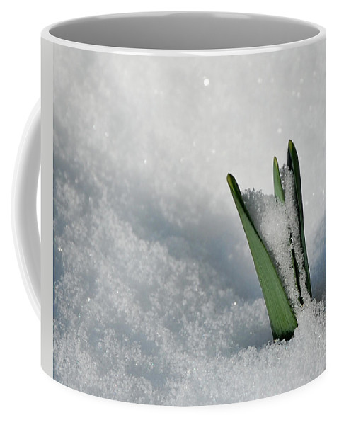 Spring Coffee Mug featuring the photograph Late Snow by Lisa Kane