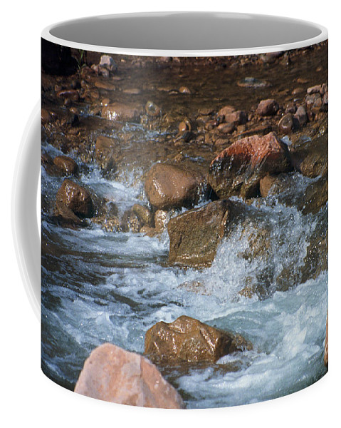 Creek Coffee Mug featuring the photograph Laughing Water by Kathy McClure