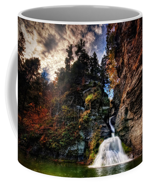 Mine Kill State Park Coffee Mug featuring the photograph Laurelindorinan by Neil Shapiro
