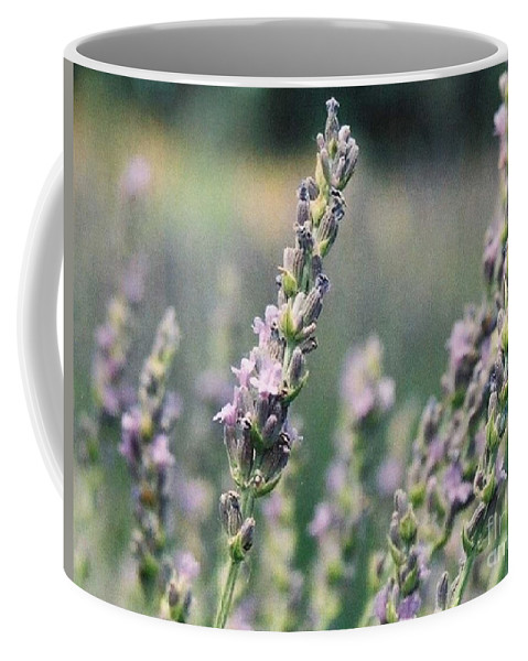 Flowers Coffee Mug featuring the painting Lavender by Eric Schiabor