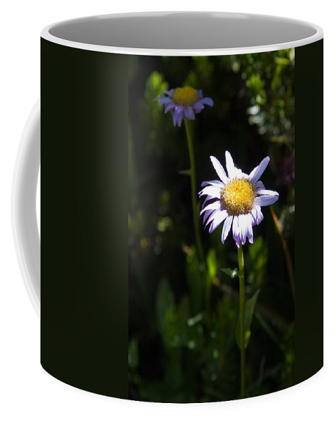 Lavender Wild Flowers Coffee Mug featuring the photograph Lavender Friends by Chris Brannen