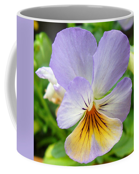 Pansy Coffee Mug featuring the photograph Lavender Pansy by Nancy Mueller