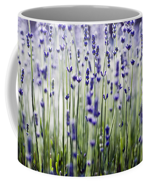 Abstract Coffee Mug featuring the photograph Lavender Patterns by Ray Laskowitz - Printscapes