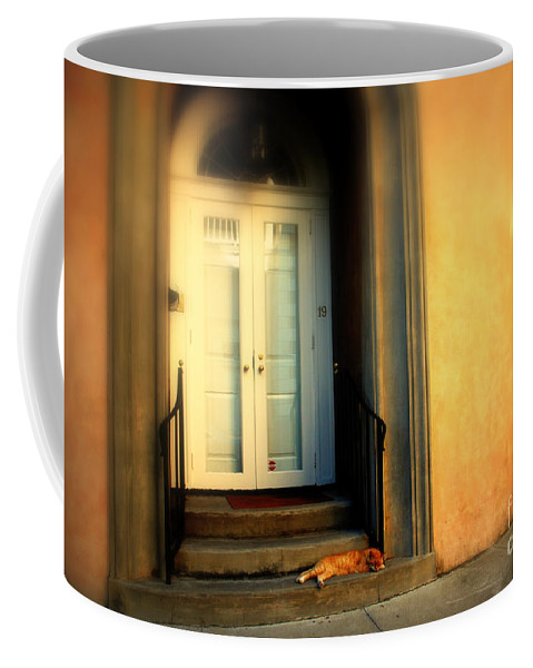 Cat Coffee Mug featuring the photograph Lazy Afternoon At Kings Street In Charleston Sc by Susanne Van Hulst