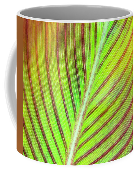 Leaf Abstract Coffee Mug featuring the photograph Leaf Abstract by Christina Rollo