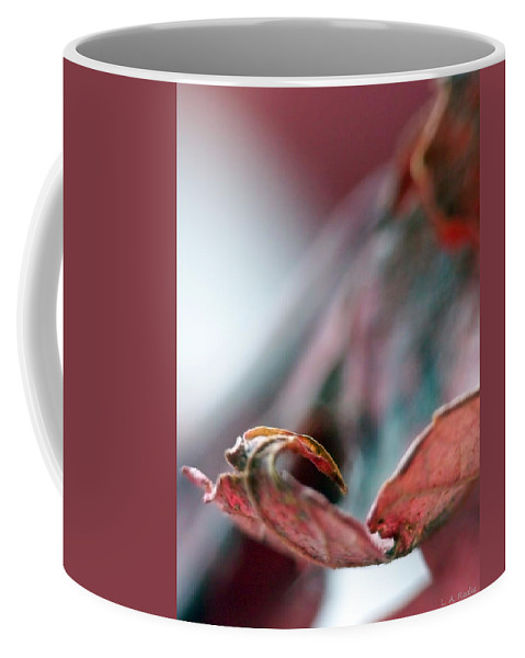Abstract Coffee Mug featuring the photograph Leaf Abstract I by Lauren Radke