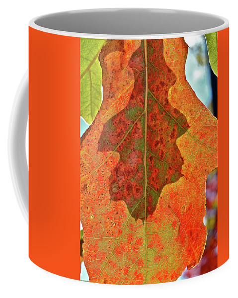 Nature Coffee Mug featuring the photograph Leaf Behind by Diana Hatcher