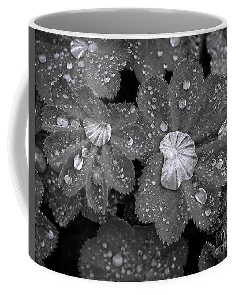 Black And White Coffee Mug featuring the photograph Leaf Pools by Emma England