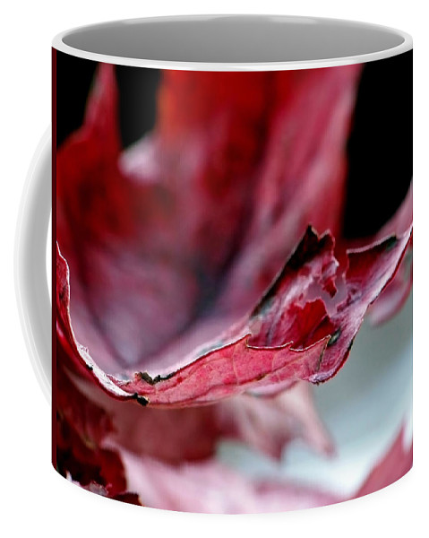 Abstract Coffee Mug featuring the photograph Leaf Study II by Lauren Radke