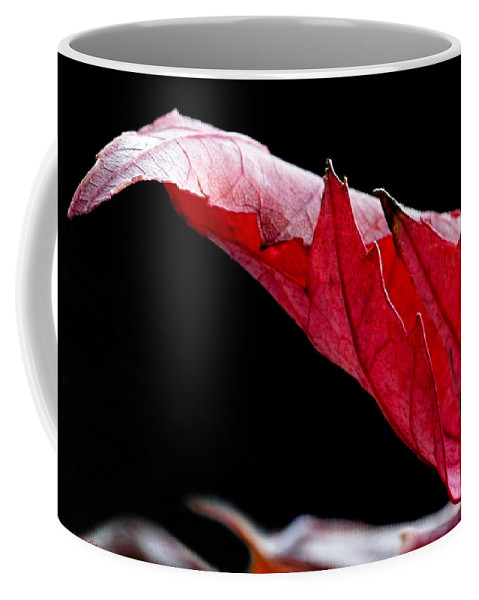 Macro Coffee Mug featuring the photograph Leaf Study IIi by Lauren Radke