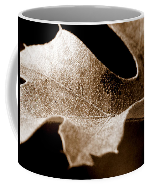 Macro Coffee Mug featuring the photograph Leaf Study In Sepia by Lauren Radke
