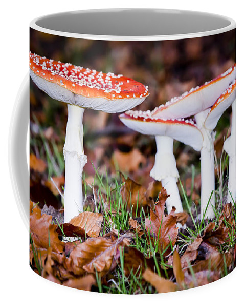 Fungus Coffee Mug featuring the photograph Lean On Me by Windy Corduroy
