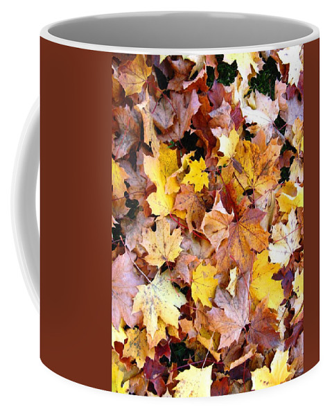 Leaves Coffee Mug featuring the photograph Leaves Of Fall by Rhonda Barrett