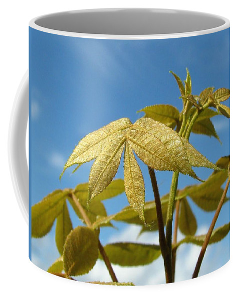 Nature Coffee Mug featuring the photograph Leaves Of Gold by Peg Urban