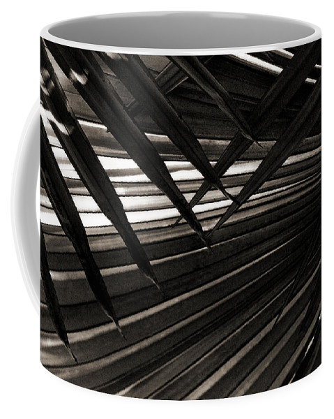Palm Coffee Mug featuring the photograph Leaves Of Palm Black And White by Marilyn Hunt