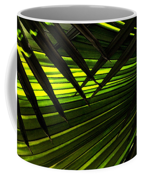 Palm Coffee Mug featuring the photograph Leaves Of Palm Color by Marilyn Hunt