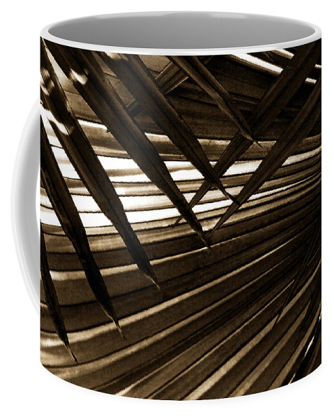 Palm Coffee Mug featuring the photograph Leaves Of Palm Sepia by Marilyn Hunt