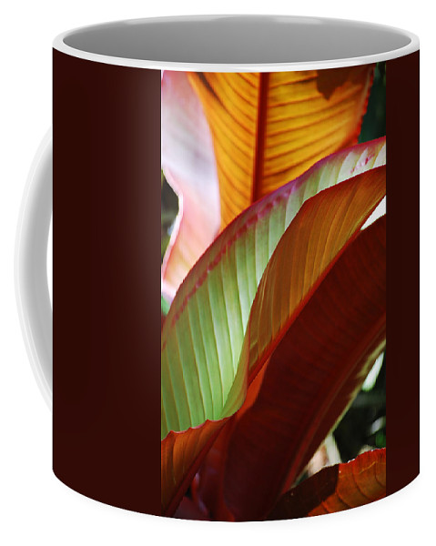 Leaves Coffee Mug featuring the photograph Leaves by Robert Meanor