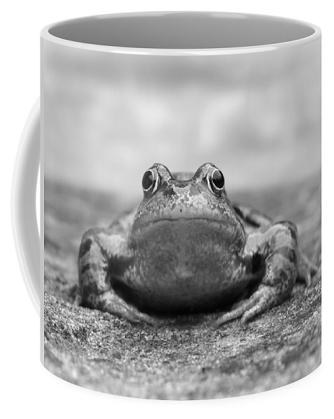 Frog Coffee Mug featuring the photograph Leaving Home - Black And White by Gill Billington
