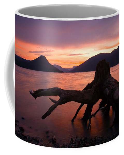 Stump Coffee Mug featuring the photograph Left Behind by Mike Dawson