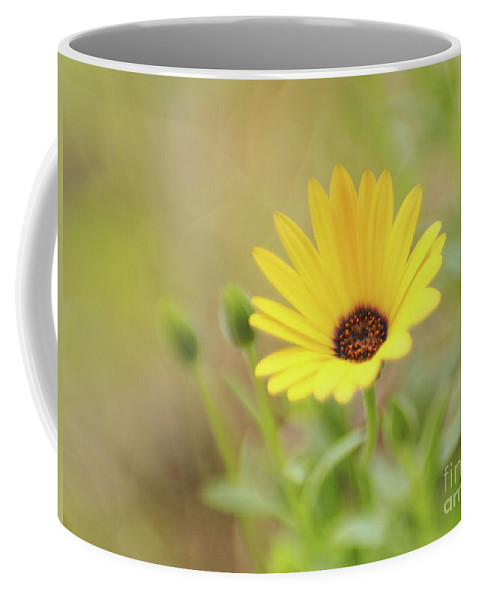 Flowers Coffee Mug featuring the photograph Lemon Symphony Dreams 3 by Dorothy Lee