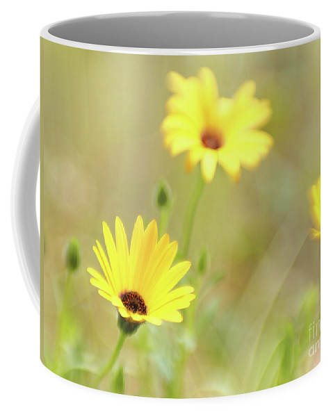 Flowers Coffee Mug featuring the photograph Lemon Symphony Dreams 4 by Dorothy Lee