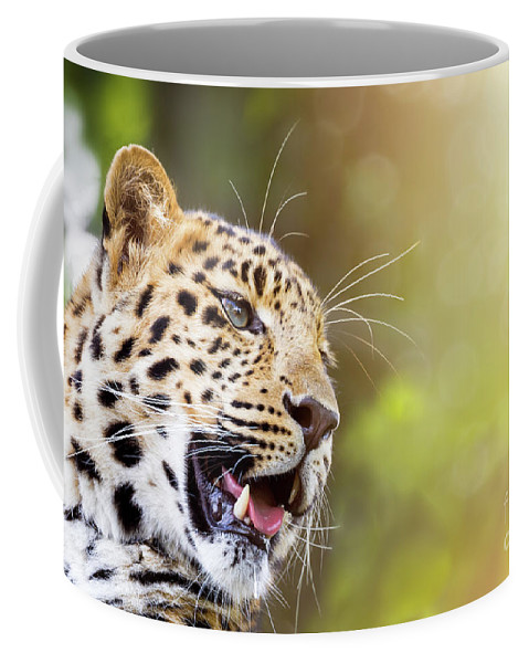 Leopard Coffee Mug featuring the photograph Leopard In Sunlight by Jane Rix
