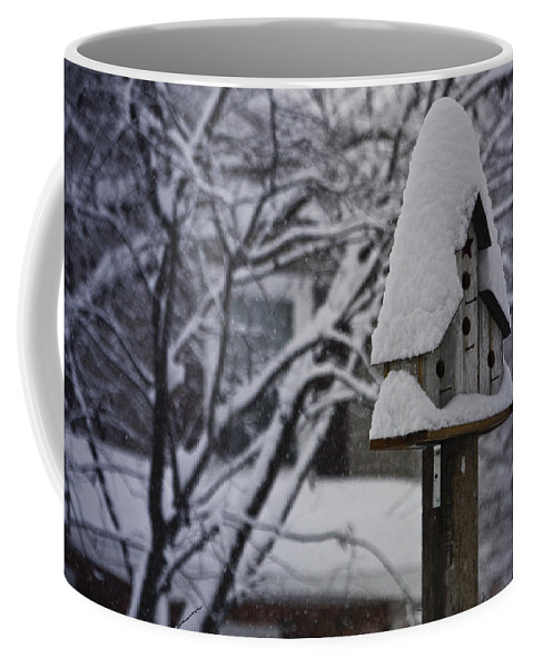 Snow Coffee Mug featuring the photograph Let It Snow by Teresa Mucha