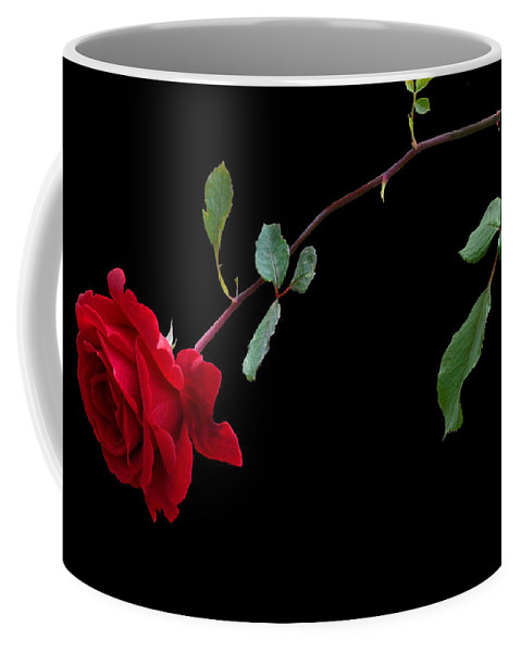 Rose Coffee Mug featuring the photograph Lets Tango by Kristin Elmquist